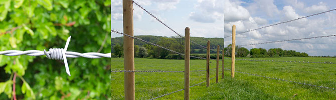 Barbed wire fence supplies fencing